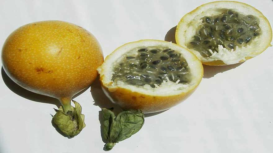 carkifelek-meyvesinin-faydalari